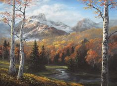 """""""Autumn Birch Trees"""" by Kevin Hill Check out my channel on YouTube: KevinOilPainting  Check out my website: www.paintwithkevin.com"""