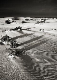 Dunas de Corralejo. Fuerteventura..
