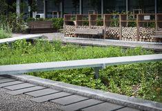 Galería de Novartis Physic Garden / Thorbjörn Andersson + Sweco architects - 2