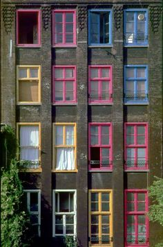 #Amsterdam - Different colour windows for #Dutch #language week! Want to learn Dutch? Check out our course outline here: http://www.cactuslanguage.com/en/languages/dutch.php