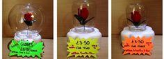 Beauty & the beast cake topper (jar & rose)