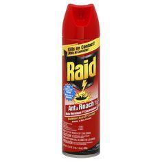 Raid Ant & Roach Killer 17, Outdoor Fresh Scent