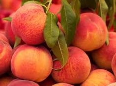 Tomorrow is National Peaches & Cream Day - Let's get cooking!