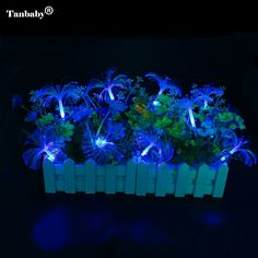Events and Parties 2M 20LED Wedding Rose LED String Lights Battery