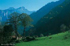 Amieva, Asturias
