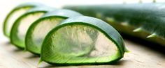 Aloe vera has been considered a curative plant for millennia. It has been shown to cure dry skin disorders and can be used on burns and rashes. See Aloe Vera Herbal Remedies for more information. Aloe Vera Face Mask, Aloe Vera For Hair, Aloe Face, Herbal Remedies, Natural Remedies, Acne Remedies, Health Remedies, Stretch Mark Remedies, Gel Aloe