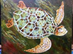 Andrew Ansaidi  painted this tranquil turtle with it's complex pattern beautifully. Andres tell me that these  sea turtles are an endangered species.  In  Haiti where he lives, sometimes fisherman will try to sell them to restaurants or sell the shells. Andrew tells me that  when possible,  either he orhis wife Will buy these turtles if they see them for sale and release them  back into the ocean.( It  is against the law for these fishermen to catch and sell them.)