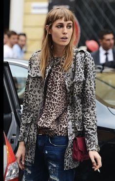 double leopard.