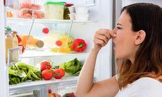 Was ist für den unangenehmen Geruch im Kühlschrank verantwortlich? Unser Ratgeber zeigt Ihnen mögliche Ursachen und liefert Tipps wie Sie Gestank im Kühlschrank eliminieren können.