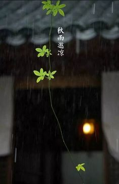 The Kimono Gallery Pretty Wallpapers, Cute Cartoon Wallpapers, Image Japon, Imam Hussain Wallpapers, Beyond The Sea, Japanese Aesthetic, Zen Art, Cool Sketches, Scenery Wallpaper
