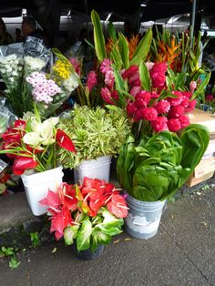 Hilo Farmer's Market, Big Island, Hawaii. Wish I could get these where I live.
