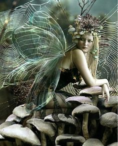 These fairy illustrations are the coolest, the awesomest collected from all over the internet. A treat for fairy tale illustrations fan-base. Fairy Dust, Fairy Land, Fairy Tales, Magical Creatures, Fantasy Creatures, Fairy Pictures, Love Fairy, Beautiful Fairies, Believe In Magic