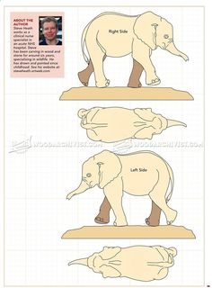 Image of # 248 elephant carving - wood carving pattern - Wood Carving Designs Simple Wood Carving, Wood Carving Faces, Wood Carving Designs, Wood Carving Patterns, Wood Carving Art, Wood Patterns, Wood Art, Dremel Carving, Elephant Images