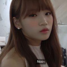 Image about kpop in chaewon 채원 by ★! Hoseok, Future Girlfriend, K Meme, Korean Face, Uzzlang Girl, Kpop, Meme Faces, The Wiz, Celebrities