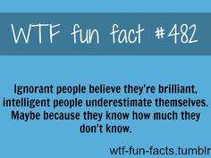 Well, that likely explains my depression.