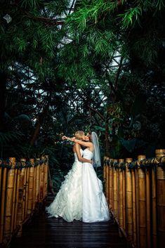 #wedding kiss  ... Wedding ideas for brides, grooms, parents & planners ... https://itunes.apple.com/us/app/the-gold-wedding-planner/id498112599?ls=1=8  ... The Gold Wedding Planner iPhone App.