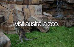 Visit Australia Zoo.