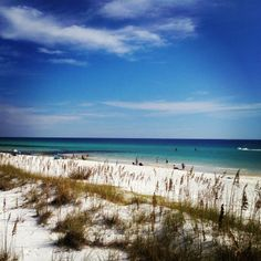 6,000 feet of natural scenic shoreline along the emerald green waters of the Gulf of Mexico welcomes visitors to Henderson Beach State Park in Destin. Enjoy truly breathtaking sunsets while relaxing by the warm, crystal clear water of the Gulf of Mexico. (All right across the street from Walmart!)