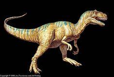 Allosaurus, mascotte de DinoMania !