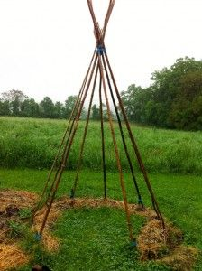 How to build a bean teepee for your kids