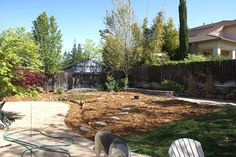 """Katie Swanberg converted 60% of  lawn space into an edible garden in the middle of a drought.   """"At the time I lived in an area that received less than 20"""" of annual rainfall. It made sense to use water wisely, and watering grass that I couldn't eat just seemed awfully wasteful. I let half of my back lawn die, planted bare-root fruit trees, and sheet mulched it. Over time I added more edible plants, all in the idea of creating my own food forest."""""""