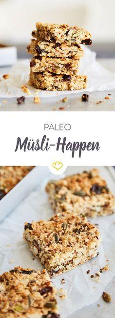 Nüsse, Kerne, Samen, Kokosraspeln, Cashewmus und eine handvoll süße Rosinen: Der Snack auf den alle Sammler unter den Paleo-Anhängern gewartet haben.