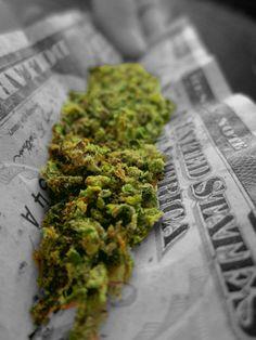 Smoke Weed every day