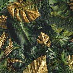 Vliestapete Fototapete Tapete Vlies Blätter Golden Botanic Monstera FW13803VE Wallpaper Size, Green Wallpaper, Wallpaper Paste, Botanical Interior, Jungle Pattern, Botanical Wallpaper, Abstract Photos, Tropical Leaves, 1 Piece