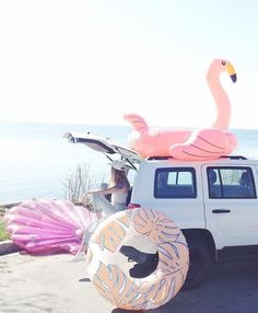Things to do in the summer: 1. Go on a road trip with the besties 2. Buy a giant flamingo pool float 3. Look cool as hell while doing it