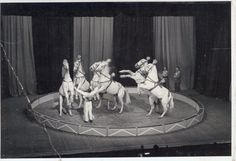 Winter Circuses in England #3