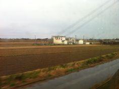 双葉山生誕の地 JR日豊本線・天津駅付近だと思われます。