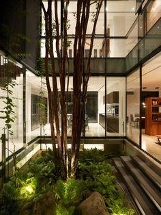 beautiful indoor garden of modern interior