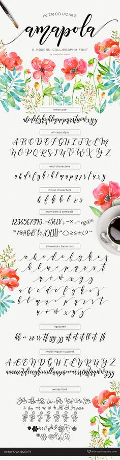 Amapola Script is a bouncy modern calligraphy script, lettered with a brush pen and cleaned for a smooth edge. Perfect to add an extra touch to your branding, or special project