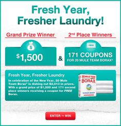 FRESH YEAR, FRESHER LAUNDRY $$ Enter to Win $2,013 in Prizes from Borax!