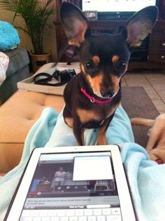 Mom ineed your lap, please move the iPad!