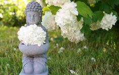 Comment le bouddhisme m'aide à accepter mon corps.