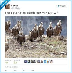 Ay, las rupturas... por @El_Citador   Gracias a http://www.vistoenlasredes.com/   Si quieres leer la noticia completa visita: http://www.estoy-aburrido.com/ay-las-rupturas-por-el_citador/