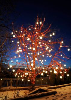 brite nites is your local professional christmas lights installation company serving park city salt lake city and surrounding areas