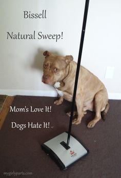Mom's Love It, Dogs Hate It!