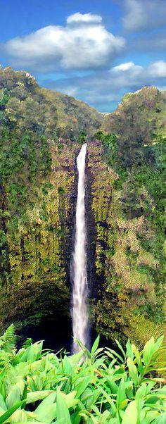 Akaka Falls. Take a short stroll to see this beautiful waterfall. #hawaii #bigisland #waterfall
