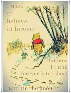 """I used to believe in forever ~ but now I believe 'forever' is too short."" ~ Winnie the Pooh"