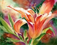 Susan Crouch - Lily Light - Day Lily~~This is a very pretty painting. Watercolor Cards, Watercolour Painting, Watercolor Flowers, Painting & Drawing, Watercolours, Art Floral, Lily Painting, Day Lilies, Watercolor Techniques
