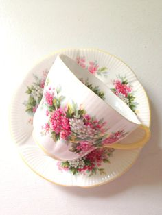 Vintage English Royal Albert Blossom Time Series--Hawthorn cup and saucer from the 1950s