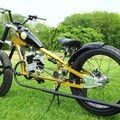FREEDOM GIRL customized gas bicycle.
