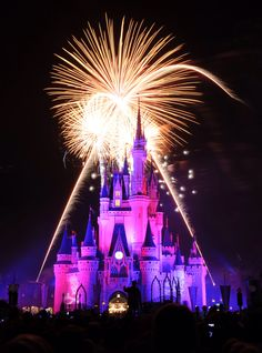 Wishes! Magic Kingdom, Walt Disney World Resort