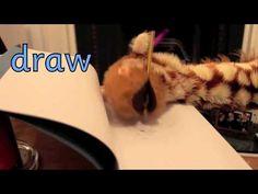 Geraldine the Giraffe learns /aw/