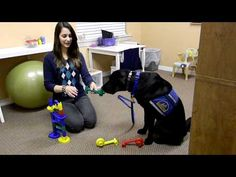 Animal Assisted Therapy at 7 Senses Therapy! Working on bilateral coordination and fine motor skills! Occupational Therapy Assistant, Pediatric Occupational Therapy, Pediatric Ot, Horse Therapy, Therapy Dogs, Dog Activities, Therapy Activities, Fine Motor Skills Development, Work With Animals
