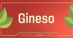 Coming tomorrow: Gineso. #comingsoon #type #typography