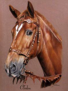 Pretty Horses, Horse Love, Beautiful Horses, Animals Beautiful, Painted Horses, Horse Drawings, Animal Drawings, Cross Paintings, Animal Paintings