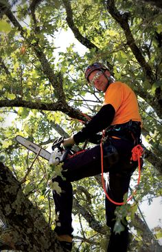 Arborist Mark Chisholm with the tools of his trade.